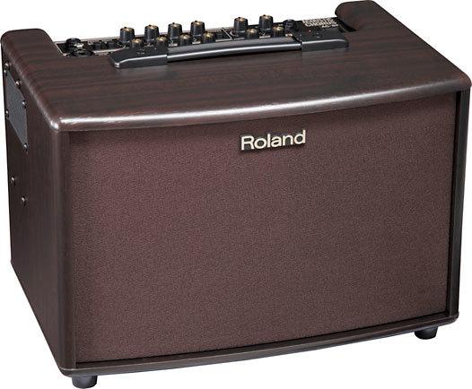 Roland AC-60RW 60 W 2x6.5 Acoustic Combo Amp Rosewood